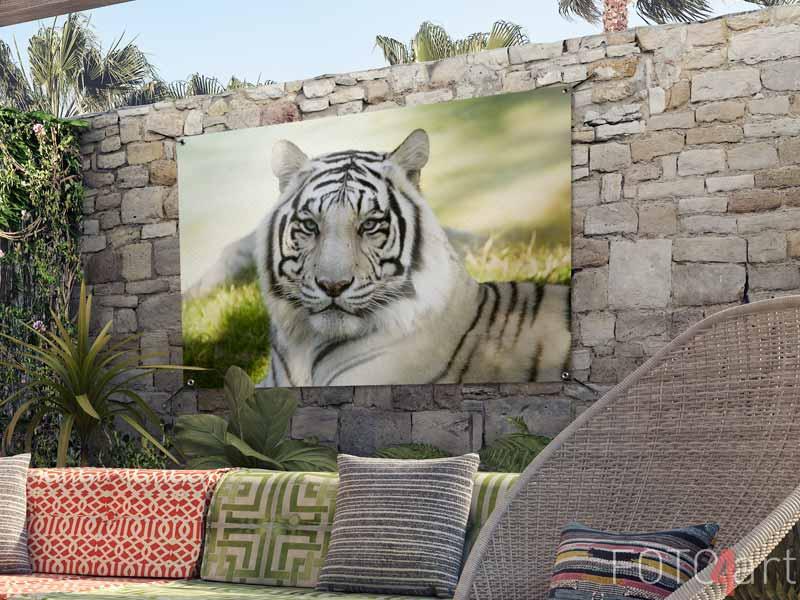 Tuinposter - Amoer-tijger