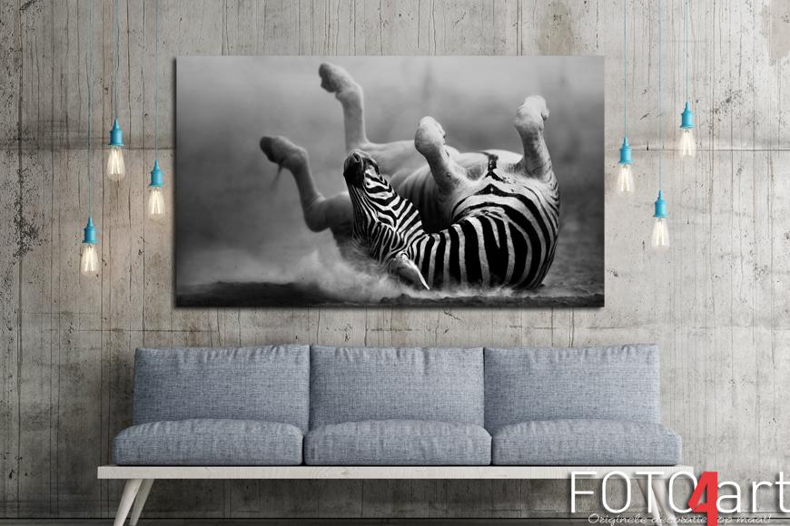 foto op canvas zebra