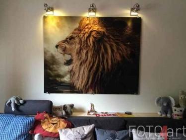 Schilderijen op glas Lion