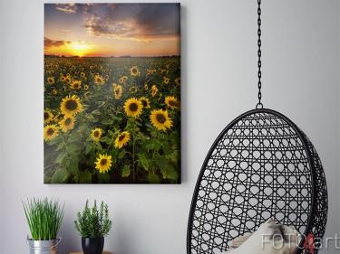 Zonnebloemveld op canvas