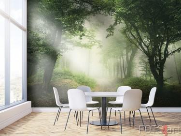 Mistige bosweg op fotobehang