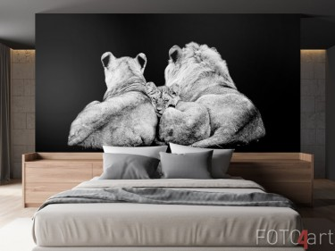 Leeuwenfamilie op fotobehang