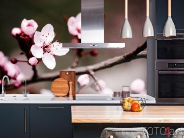 Keuken Achterwand met Foto Kersenbloesem