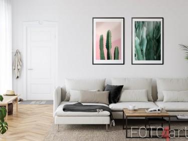 Ingelijste posters met cactussen
