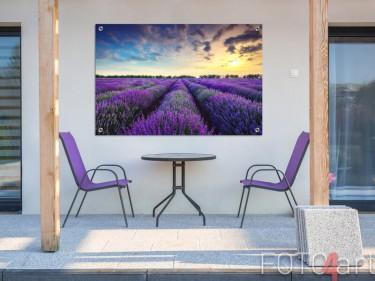 Tuinposter van een lavendelveld
